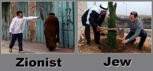 zionist jew what differences