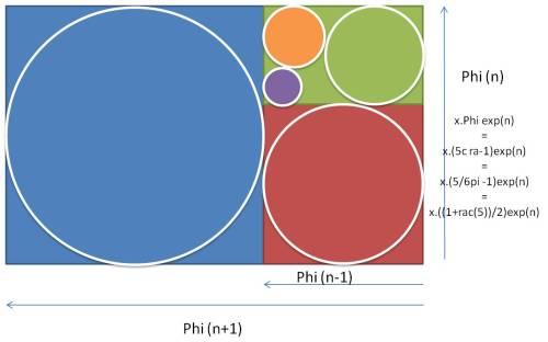 phi - pi - cra - rac5 - proportions