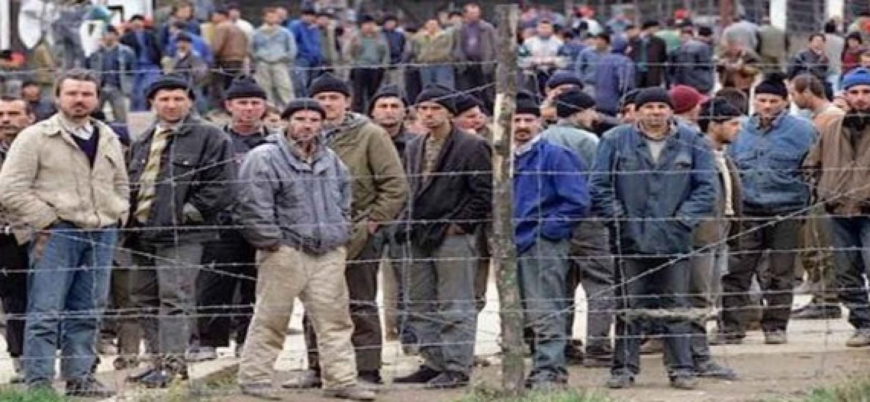 La horde d'or et les camps de réfugiés en Europe (Piero ...