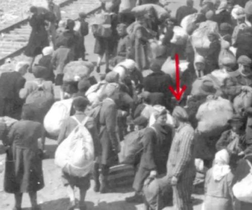 A Auschwitz _ ouvrez les yeux et n'écoutez pas les guides